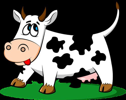 krowa-dobra